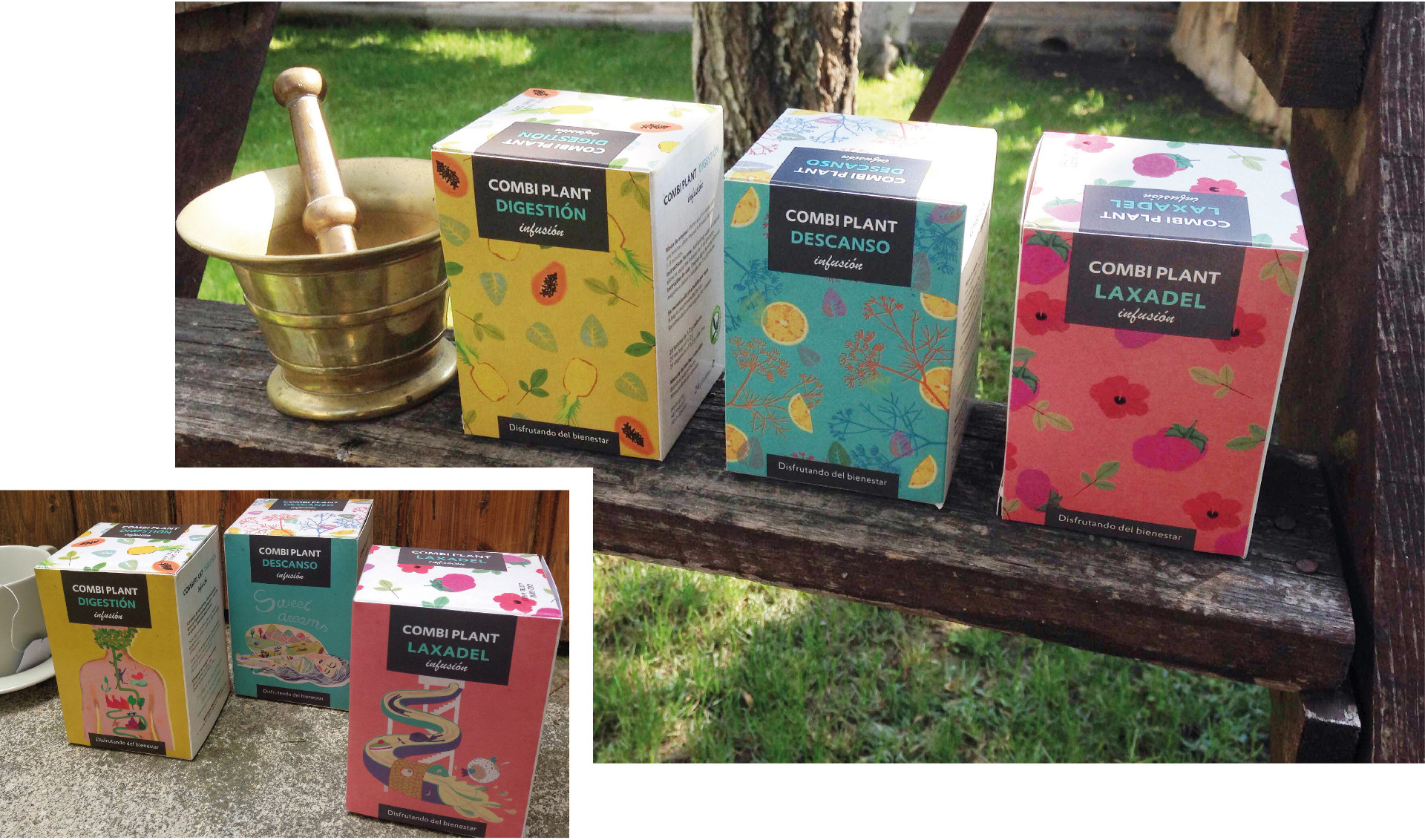 09-packaging-infusiones